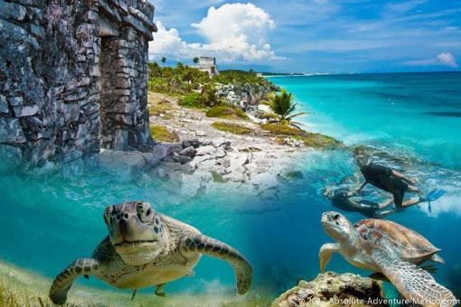 Tulum-turtles-tour